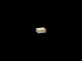 Камелия ПЛ-1026 Полки