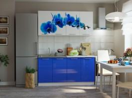Кухня Синяя орхидея 1,6 м.